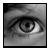cours photo le noir et blanc