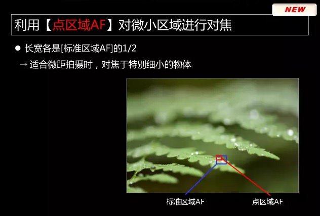 Nikon-D850-camera-presentation-leaked-21